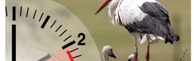 Zomertijd: uurtje korter slapen, maar langer licht