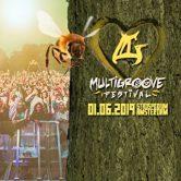 Multigroove Festival