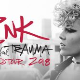 Pink – Beatiful Trauma World Tour