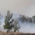 Bewoners Limburg geëvacueerd wegens natuurbranden