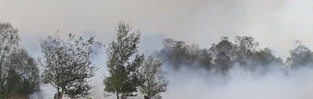 Brandweer vecht tegen natuurbranden Brabant en Limburg